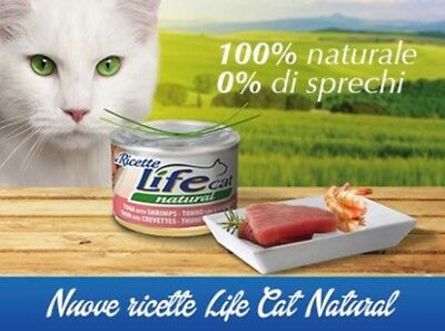 lifecat life cat scatolette gatto 150 gr 144 pz mix gusti