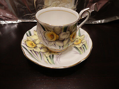 Royal Albert Tea cup & Saucer  - Daffodil - flower of the month series #3