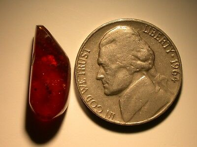 RARE Lacewing in Cherry RED Burmite Amber from Cretaceous Period Dinosaur Age