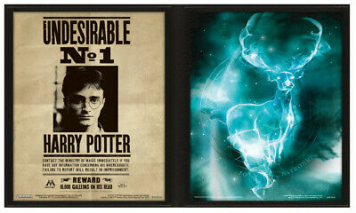3D Lenticular Poster Harry Potter Sirius Black Wanted Have You Seen This Wizard