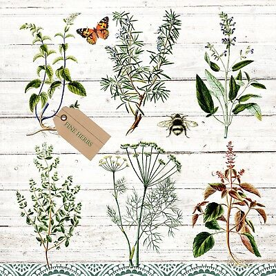 597 oregano Herbs thyme 4 single paper decoupage napkins rosemary sage