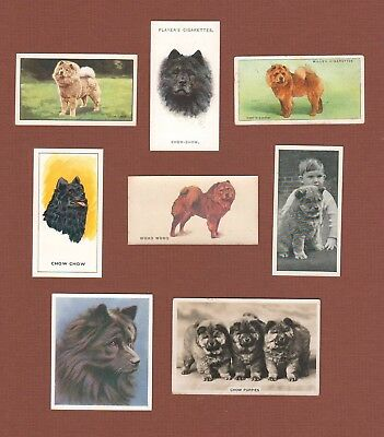 Chow Chow dog cigarette trade cards set of 8