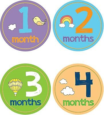 Personalised Monthly Baby Stickers, Milestone Stickers, Baby Shower Gift_B034