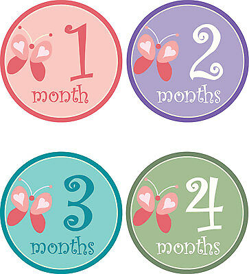 Personalised Monthly Baby Stickers, Milestone Stickers, Baby Shower Gift_G018