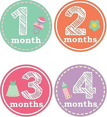 Personalised Monthly Baby Stickers, Milestone Stickers, Baby Shower Gift_G023