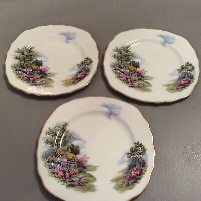 Royal Vale Ridgway Pottery Cottage Garden 3 tea plates 1950's