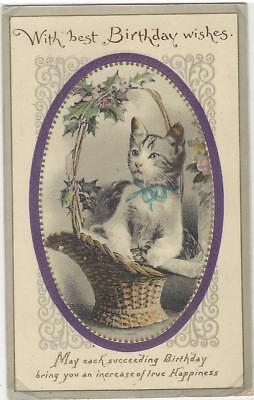 Animal Postcard -Court -Cat with Birthday wishes