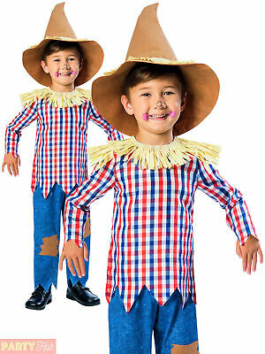 Boys Scarecrow Costume Childs Fancy Dress Kids World Book Week Day Outfit