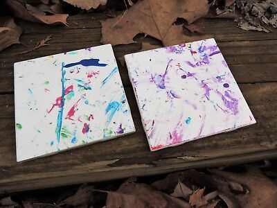 Painted by a Peregrine Falcon! Two Wildlife Center of Virginia Coasters