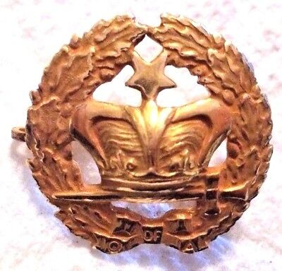 Vintage 10K Gold Top Fraternal Lapel Pin O of A Gold Crown w/ Star 14mm 1.1gr