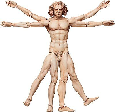 *NEW* The Table Museum: Vitruvian Man Figma #SP-075 Action Figure by FREEing