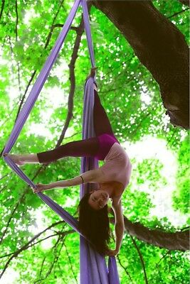 (Lavender) - Dasking Premium Aerial Silks Equipment - Safe Deluxe Aerial Kit