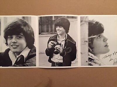 Three, Tri-Fold 8x10 Fan Club Photo - Young Donny Osmond - Vintage