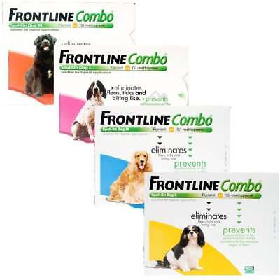 Frontline combo dogs/chiens 2-60kgs - 3 pipettes fleas, ticks and lice