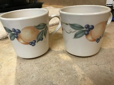 Corelle/Corning ABUNDANCE Coffee/tea Cup/Mug ONLY (saucer sold separately)