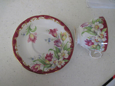 Queen Anne Cup & Saucer  -  Bone China.