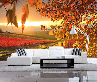 Golden Blazing Plain 3D Full Wall Mural Photo Wallpaper Printing Home Kids Decor
