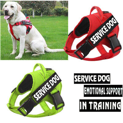 Soft Mesh Pet Harness Control Harness Walk Collar Safety Strap Dog Cat Vest NEW