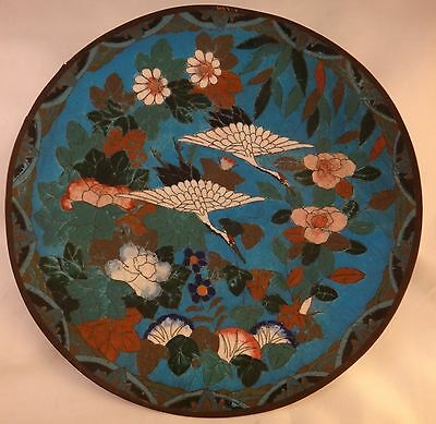 """Japanese 1890's Cloisonné Plate. Meiji period. Swans flying among floral. 11 ¾"""""""