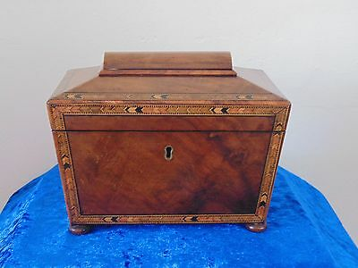 Antique Regency Walnut Tea Caddy C.1820