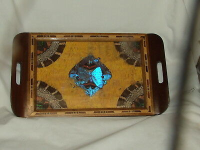 """Vtg Genuine Butterfly Tray Under Glass Inlaid Wood 16"""" by 9"""" Brazil"""