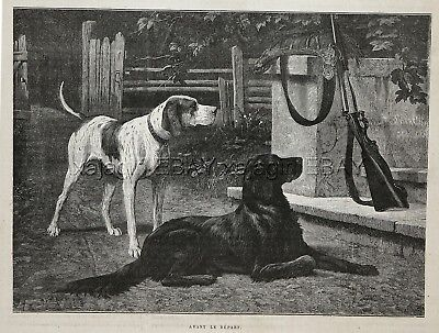 Dog Flat-Coated Retriever & Foxhound Wait to Go Hunting, 1880s Antique Print