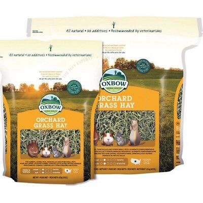 Oxbow Orchard Grass Hay for small herbivores  425gm (15oz) rabbits, guinea pigs