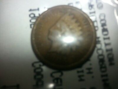 1905 Indian Head Cent  good condition