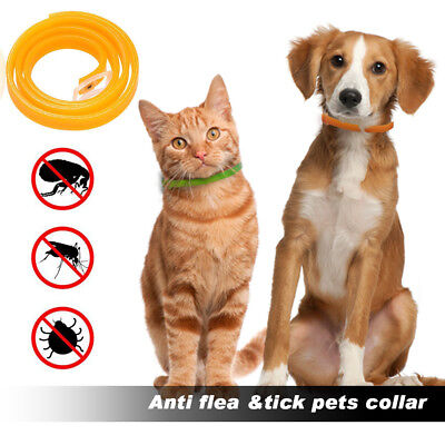 Anti Repel Tick flea tick Dog Cat pet collar Protection Against Also for People