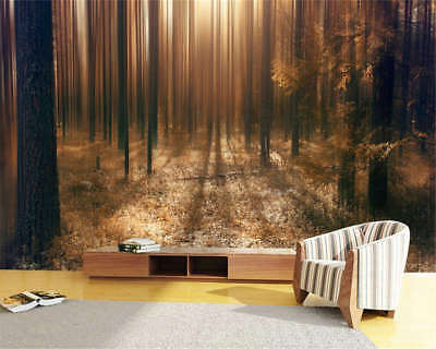 Utmost Dark Woods 3D Full Wall Mural Photo Wallpaper Printing Home Kids Decor