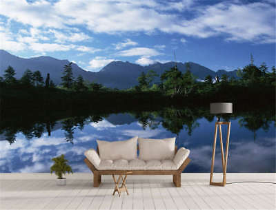 Remote Concise Lake 3D Full Wall Mural Photo Wallpaper Printing Home Kids Decor