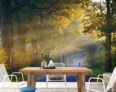 Fairy Idle Woods 3D Full Wall Mural Photo Wallpaper Printing Home Kids Decor