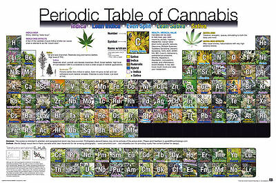 Cannabis Seeds Marijuana Poster Periodic Table FREE  DELIVERY