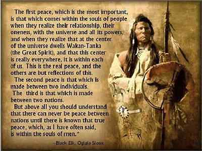 Native American Quote Refrigerator magnet