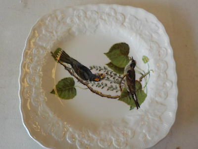 """ALFRED MEAKIN ENGLAND BIRDS OF AMERICA Kingbird SQUARE LUNCH PLATE, 8.5"""" across"""