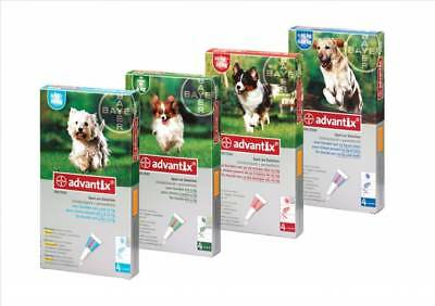 Bayer ADVANTIX antiparasitaire flea chiens dogs x 4 pipettes up 4 to 25kgs
