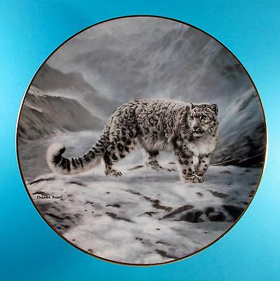 Softly Softly Snow Leopard Collector Plate By Charles Frace Bradford Exchange
