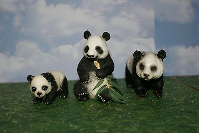 Schleich Panda Bear Family Male, Female & Cub From the Wild Animal Series (3)