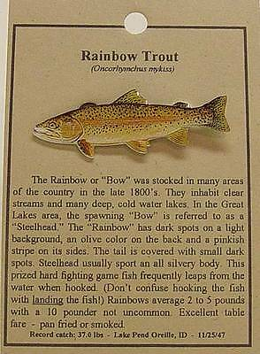 New Rainbow Trout  Fish Hat Pin Lapel Pins  Free Shipping
