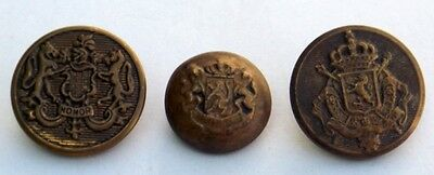 Old Lion Embossed Brass Button Lot # 3 Vintage Army Honor Button Collectible