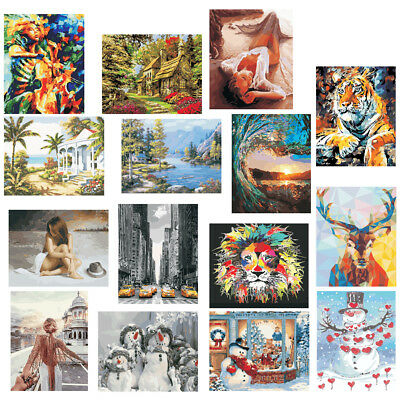 Acrylic Paint By Numbers Kit DIY Oil Painting Drawing On Canvas Home Decor