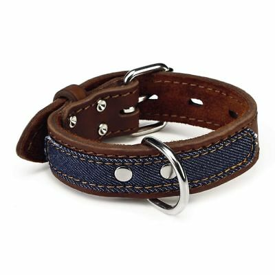 Beeztees Collare Collarino per Cani Cane Morbido Denim in Pelle 30 mm 24-33 cm