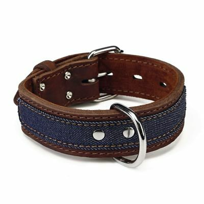 Beeztees Collare Collarino per Cani Cane Morbido Denim in Pelle 40 mm 33-43 cm