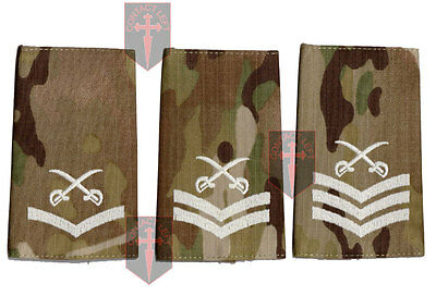 Pair of Multicam MTP PTI Rank Slide Physical Training Instructor - LCPL CPL SGT