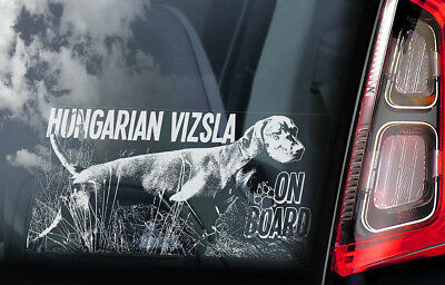 Vizsla on Board - Car Window Sticker - Hungarian Pointer Dog Sign Decal - V04