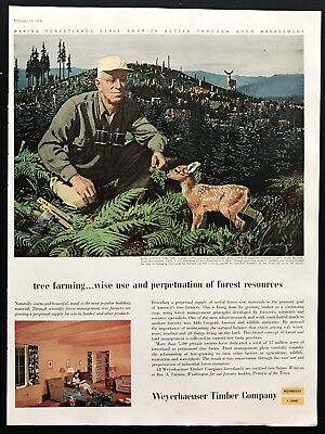 1956 VINTAGE PRINT Ad YALE & TOWNE Pineapple Farming Image 50's