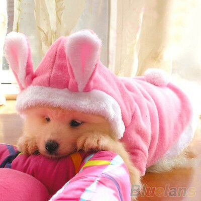 EG_ Trendy Pet Dog Cat Cute Bunny Warm Autumn Winter Clothes Puppy Costumes Appa