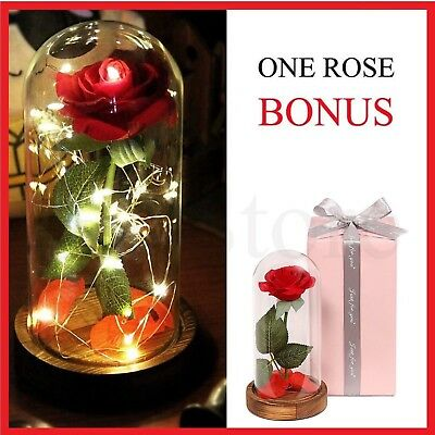 Beauty And The Beast Enchanted Rose Glass Dome LED Wedding Birthday Gift For Her