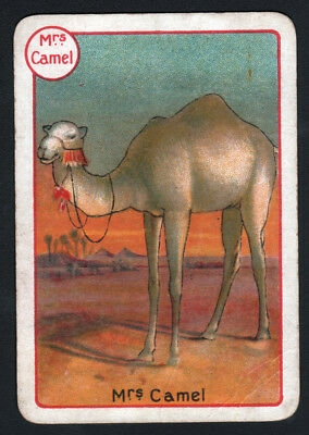 CAMEL, Lovely Victorian Playing Card- Swap Card!