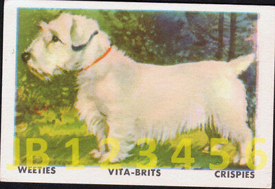 DOG Sealyham Terrier, Vintage Australian Trading Card 1962